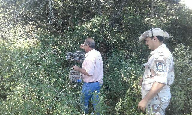 Se rescataron y liberaron especies de la fauna entrerriana