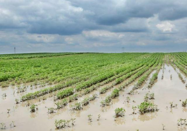 """Inundaciones: Buryaile criticó la """"inacción y desidia"""" del Kirchnerismo"""