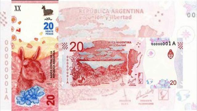 Salió el nuevo billete de $ 20: un guanaco con más medidas de seguridad