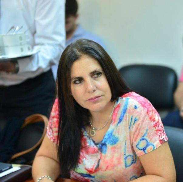 Violencia en Patronato: un pedido de informes paradójico desde Diputados