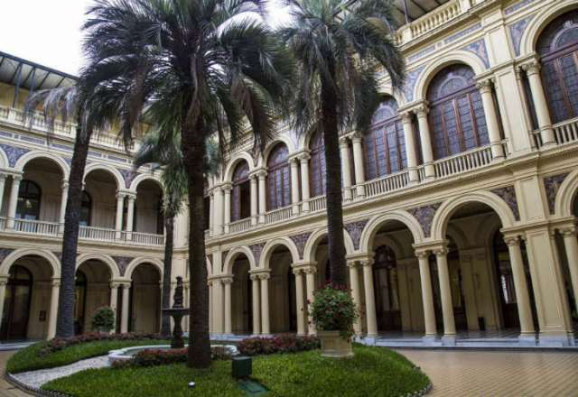 El Gobierno gastará 235 mil pesos en una palmera para Casa Rosada