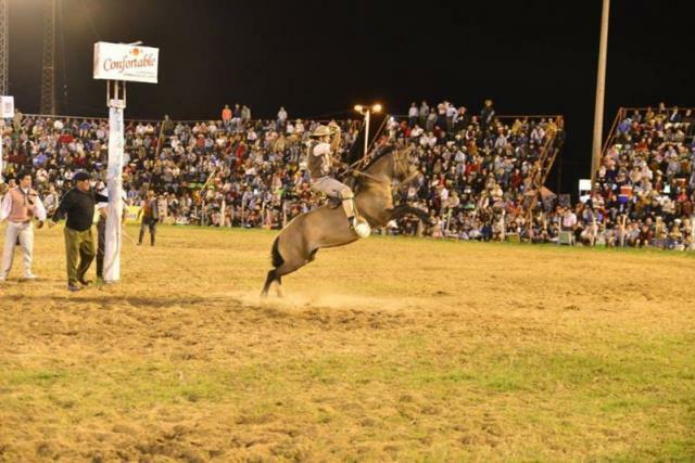 RENATRE Entre Ríos participó del 47º Festival de Jineteada y Folclore de Diamante