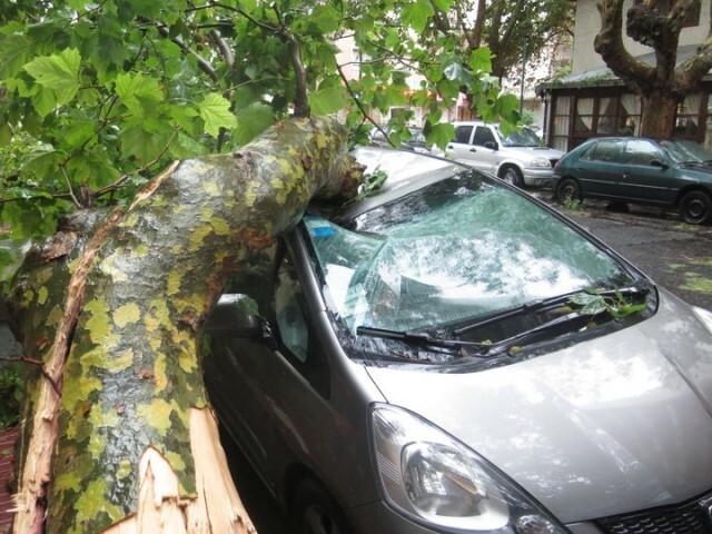 Fugaz temporal estremeció Mar del Plata
